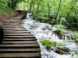 Plitvice Lakes National Park,Croatia 04