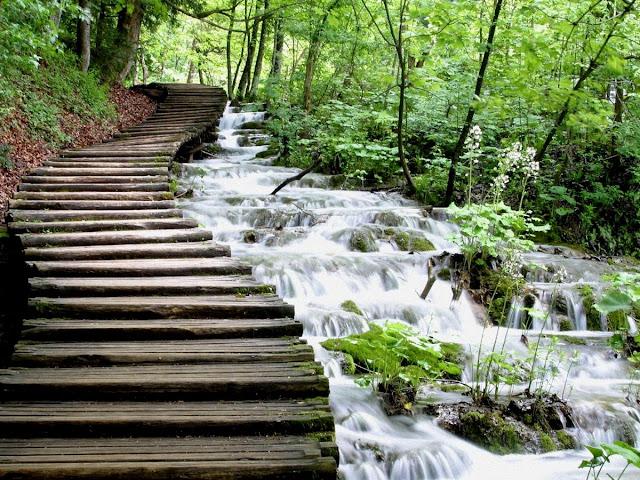 Resultado de imagen de parque nacional de los lagos de plitvice croacia