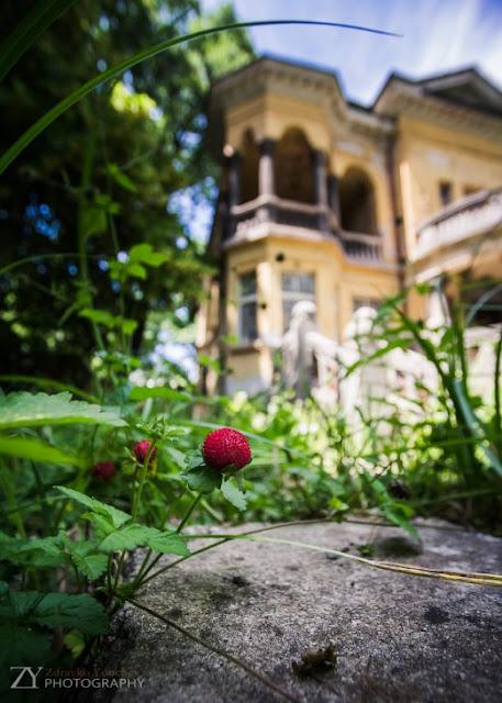 La casa de las Fresas Sofía Bulgaria