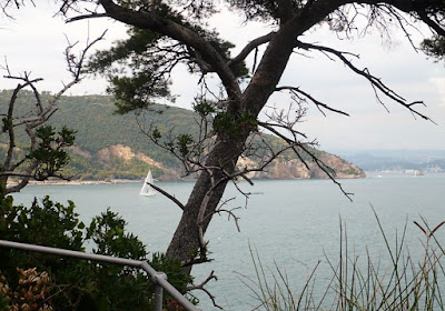 Panorama dall'isola del Tino