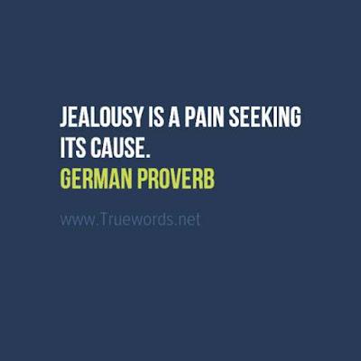 Jealousy is a pain seeking its cause.