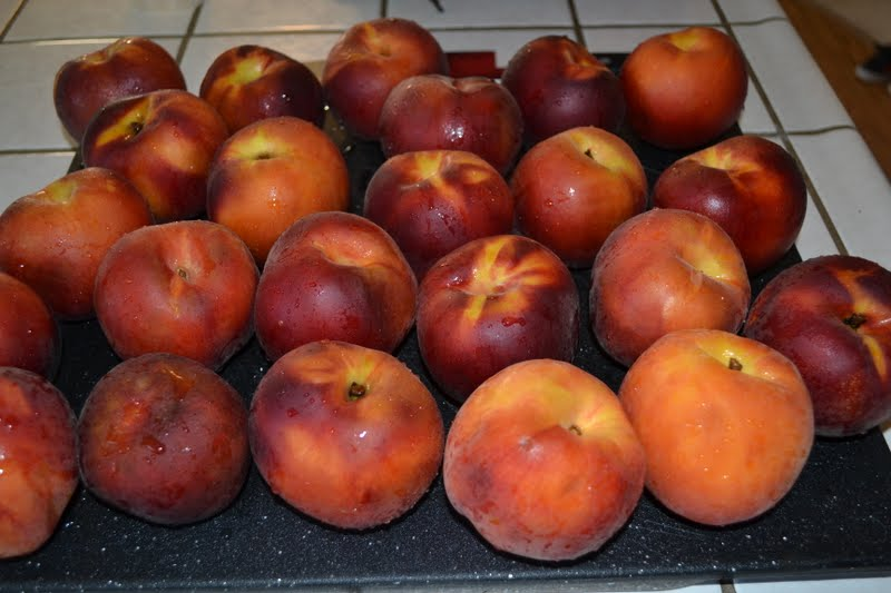 Nifty Thrifty & Thriving: How to freeze peaches