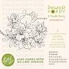 Power Poppy Azaleas Forever