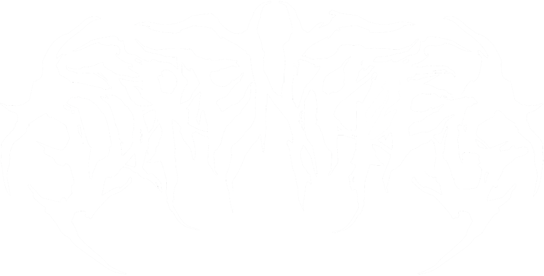 DIRENOTES: Underground Metal Reviews, Interviews, Live coverage, and more