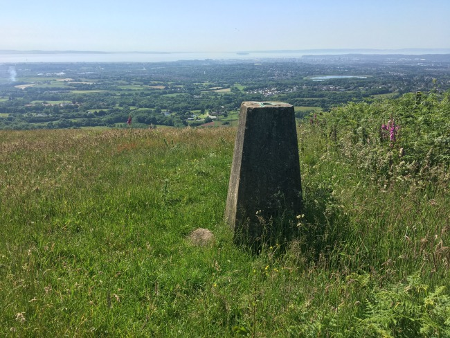 Llwyn-Celyn-whips-an-easy-walk-with-a-view-trig-point