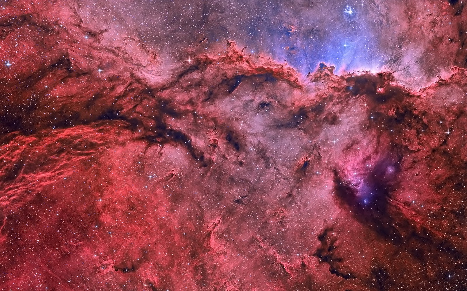 Share Science to Everybody!: Nebulae: Bonfires in heaven