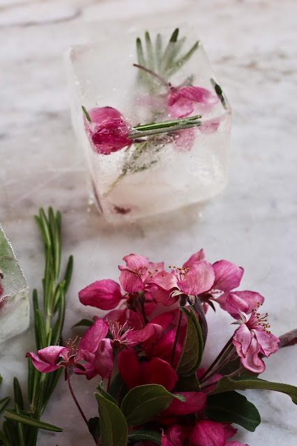 diy,comment-faire,faire,soi-meme, maison,glacon,fleur,herbe-fraiche,glace,gin,gin-toni,madame-gin