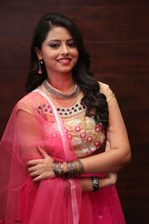 Geethanjali sizzles in Pink at Mixture Potlam Movie Audio Launch