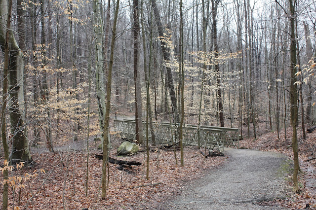 Trail to Blue Hen Falls with a bridge in Ohio