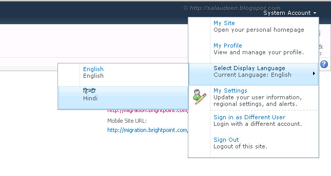 enable multilingual sharepoint 2010