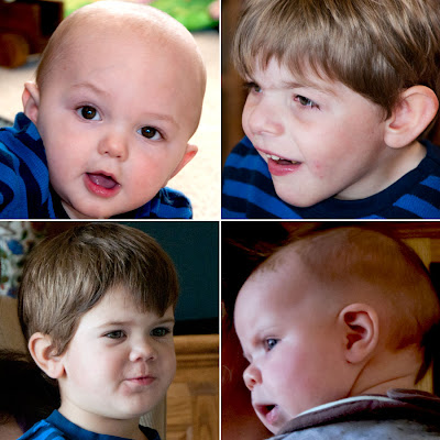 4 Grandsons: LadyD Books