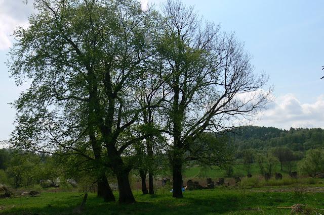 Opuszczona wieś Tworylne