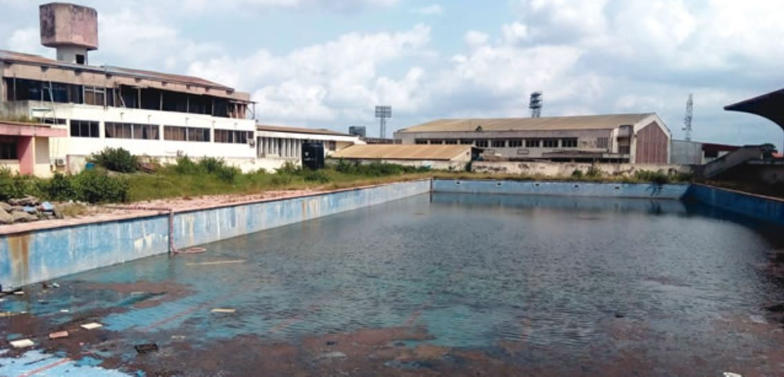 Tension As Snakes Dominate Nigerian Stadium Swimming Pool 247 Nigeria News Update