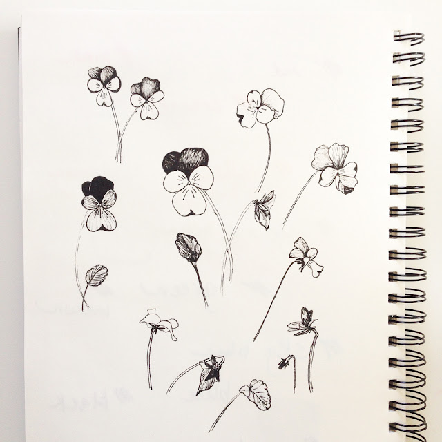 violas, micron, sketches, sketchbook, Anne Butera, My Giant Strawberry