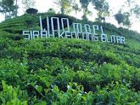 Wisata Di Kebun Teh Ala di Eropa di Sirah Kencong, Blitar