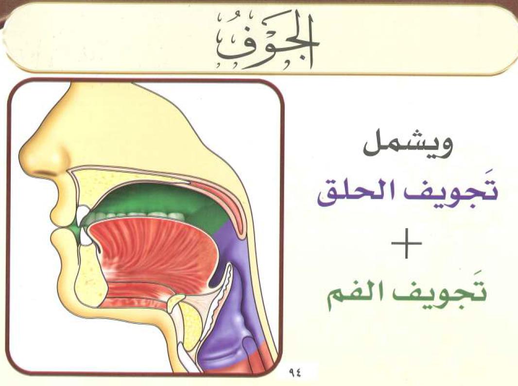 كتاب البرهان في تجويد القرآن pdf