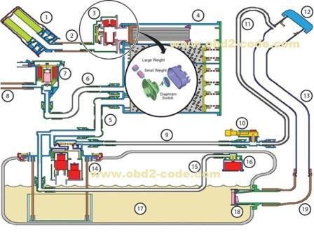 Evap System Leak   Best Upcoming Car Release