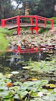 Blue Lotus Water Garden,  Yarra Junction