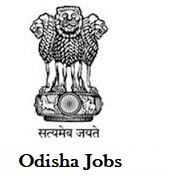 DMF Keonjhar jobs,latest govt jobs,govt jobs,latest jobs,jobs,MO & Specialist jobs