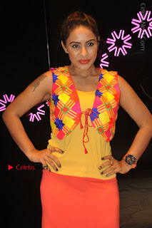 Telugu Actress Model Sri Reddy Latest Stills in Yellow Dress  0015.JPG