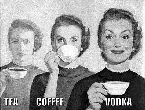 seguidores-twitter-vodka