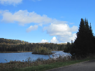 View From Lake Opeongo Road.