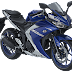 Mengulas Fitur dari Yamaha R25