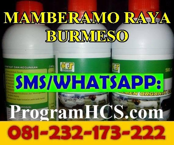 Jual SOC HCS Mamberamo Raya Burmeso