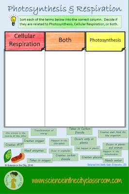An example of a digital resource to help students understand photosynthesis and cellular respiration