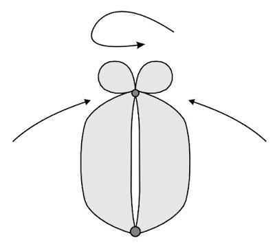 Схема цветка тюльпана из ШДМ