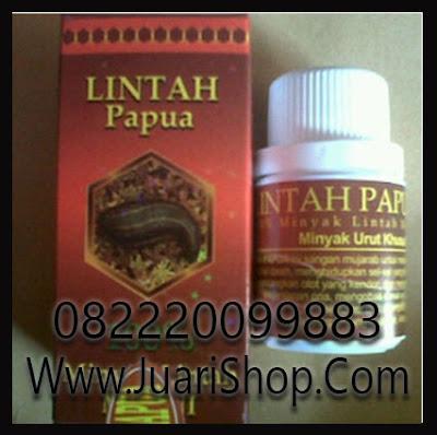 agen lintah papua asli di sulawesi utara 082220099883