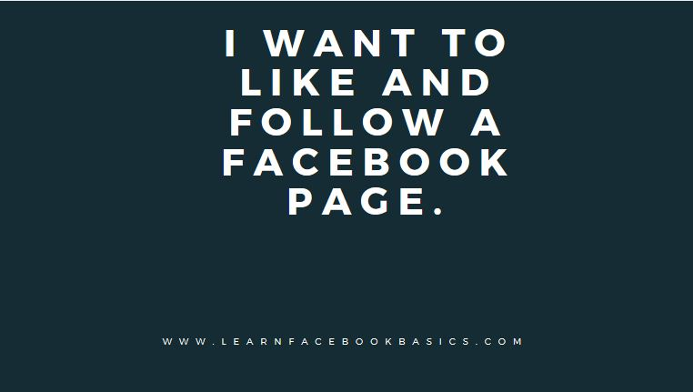 how to see your facebook page likes