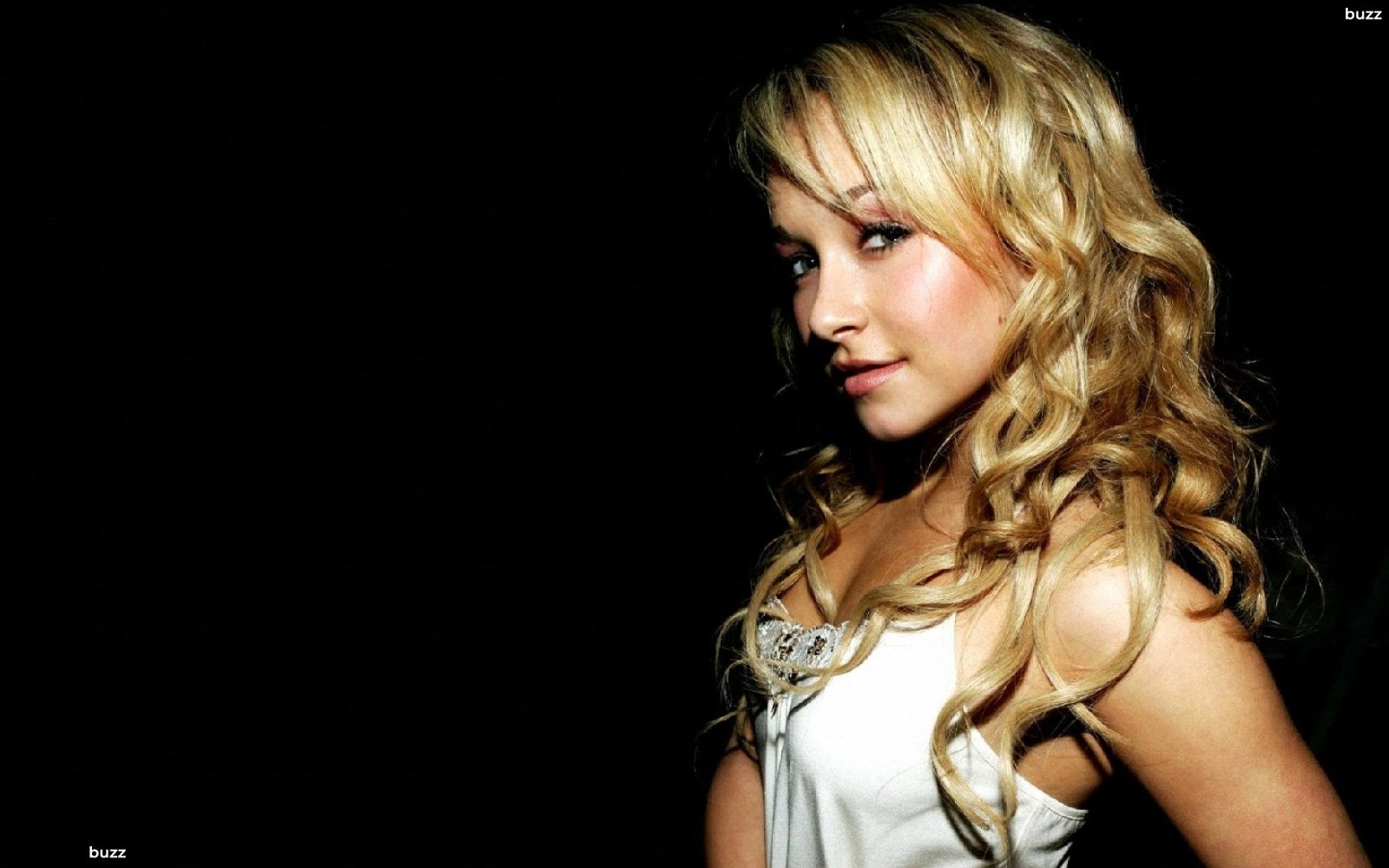 Halle Berry Cute Wallpaper Wikimise Hayden Panettiere Wiki And Pics