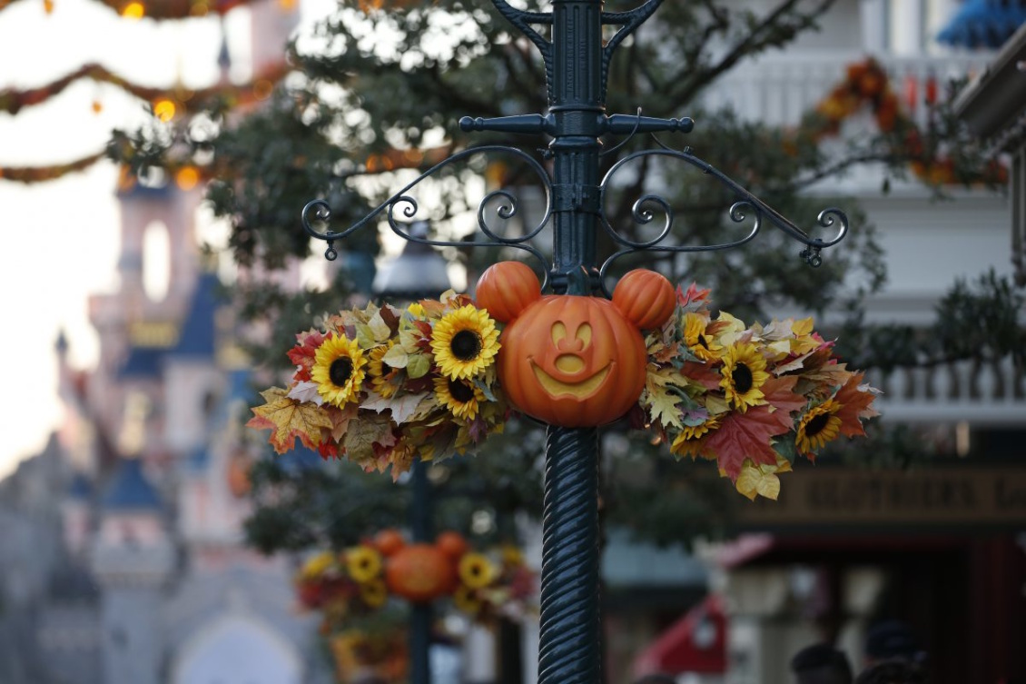 Disneyland Paris - Halloween Festival und Halloween Party 2019 - Dekoration Kürbis Mickey