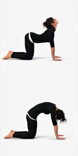 kentrosystems 'yoga' asanas for better posture