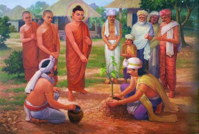 Đạo Phật Nguyên Thủy - Kinh Tăng Chi Bộ - Ví dụ thửa ruộng