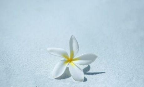 http://2.bp.blogspot.com/-XAg6rH80HQM/Ubu0Y2nVdsI/AAAAAAAAALc/pOeB6GmYC2g/s1600/adab-ziarah-kubur.jpg