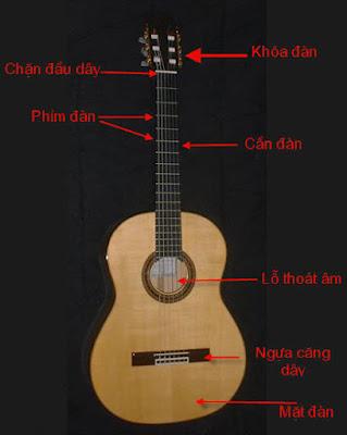 Hướng dẫn cơ bản về đàn guitar