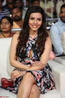 Kyra Dutta in a Deep neck Small Dress at Shamanthakamani pre release function ~  Exclusive 063.JPG