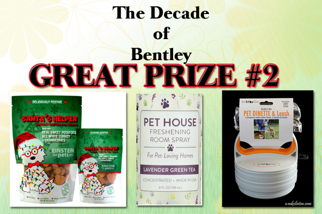 The Decade of Bentley Giveaway Prizes