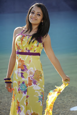 actress trisha hot photos and hd wallpapers collections