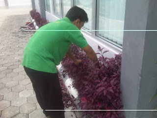 Divisi Cleaning Service