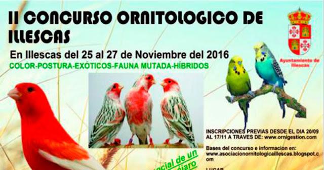 vista parcial del cartel del concurso ornitologico