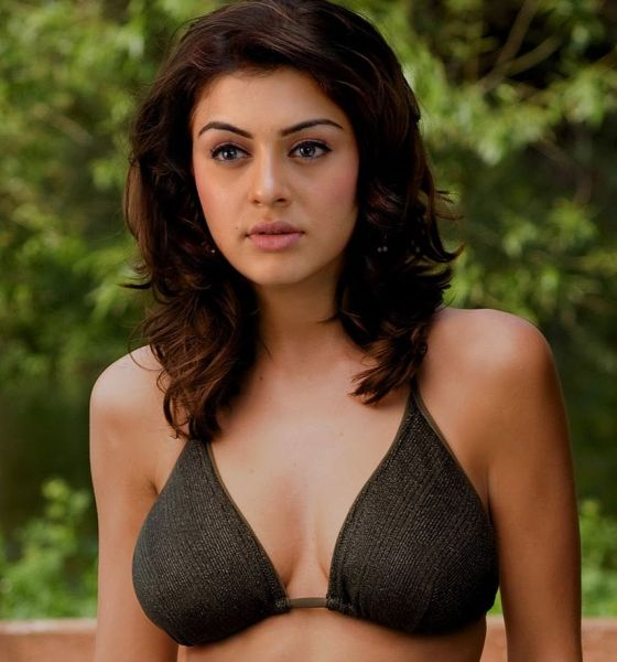 Hansika Motwani Hot Nude Stills - Sex Photo-4435