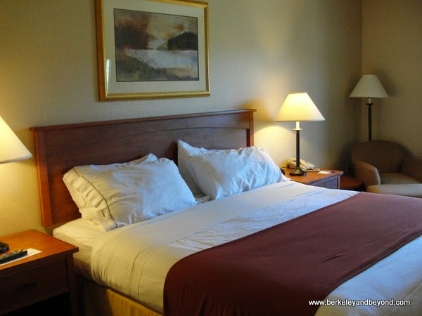 guest room at Gold Miners Inn in Grass Valley, California