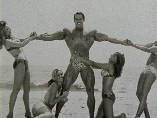 Arnold Schwarzenegger harem sex 5 times a day.  STRENGTHFIGHTER.COM