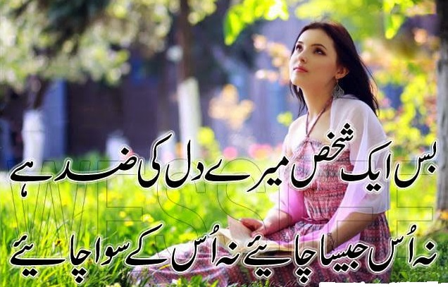 quote for whatsapp status 2017 good shayari in urdu bas ek shakhs mere dil ki zid hai