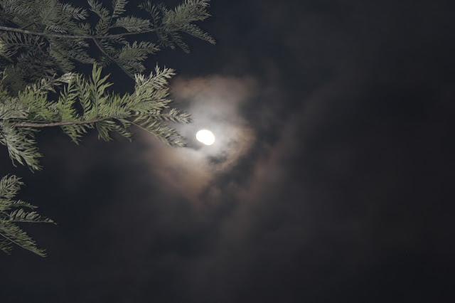 Sight of Moon on Hills