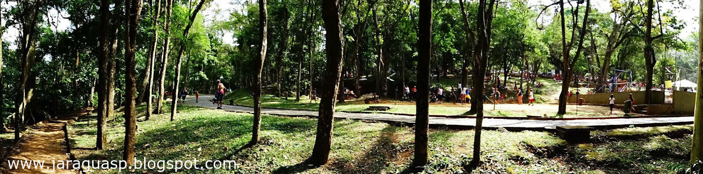 Parque Estadual Jaraguá. Foto: Marinaldo Pedrosa