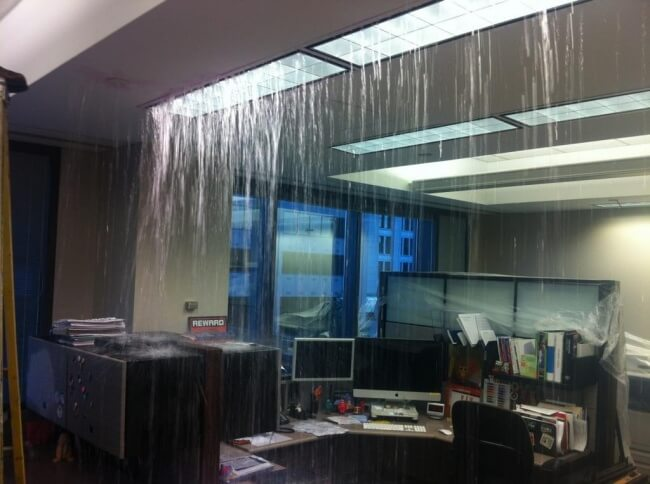 18 Pictures That Show How Nature Secretly Laughs At Us - It's just a shower.